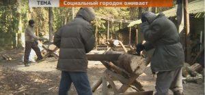soz-gorod